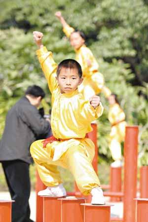 Мэйхуачжуан Боевые искусства Китая