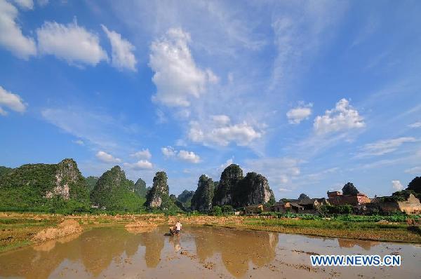 #CHINA-GUANGXI-GUILIN-SUMMER HARVEST (CN)