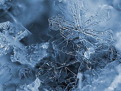 картинки мороз: